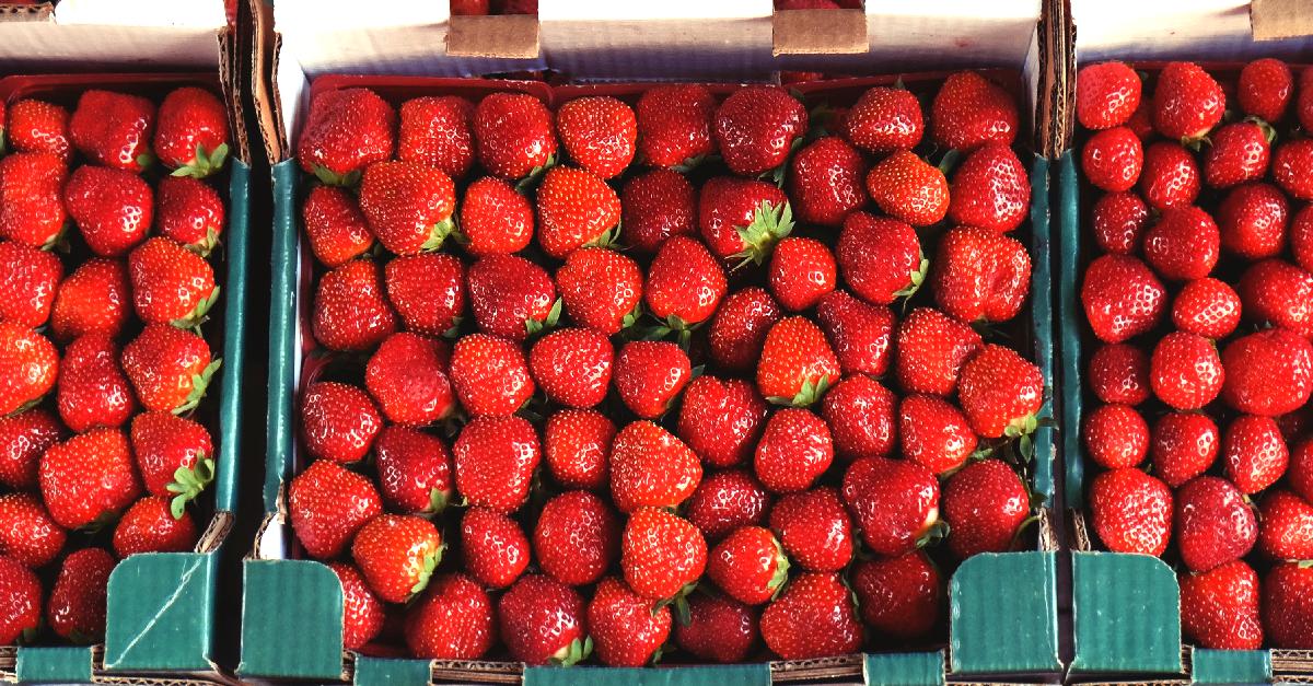 tarte aux fraises revisitee